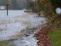 Marsh sill during storm