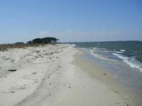 Burke Beach